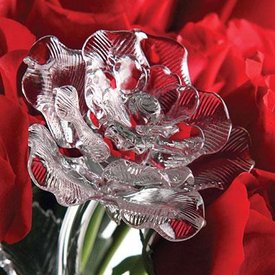 Waterford Crystal Fleurology Flower Rose