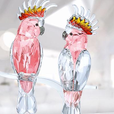 Swarovski Paradise Pink Cockatoos
