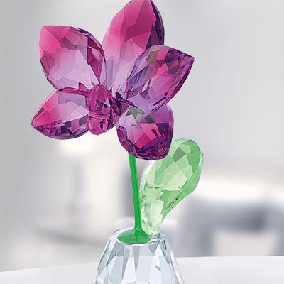Swarovski Flower Dreams Orchid