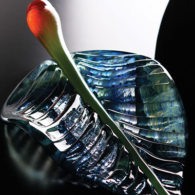 Kosta Boda Wide Life Leaf Sculpture