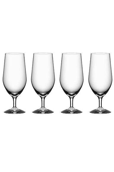 Orrefors Morberg Beer Glass, Set of Four