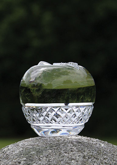 Cashs Crystal Cooper Large Apple Paperweight