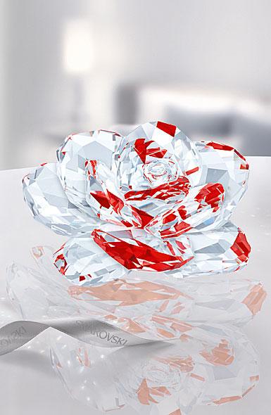 Swarovski Rose, Light Siam