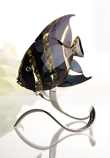 Swarovski French Angelfish, Jonquil Moroda
