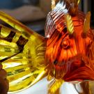 Lalique Lionfish Lost Wax Sculpture, Amber Limited Editon of 8