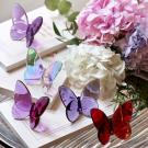 Baccarat Crystal, Lucky Butterfly, Purple
