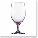 Schott Zwiesel Tritan Forte Touch Purple Water Glasses, Set of Six