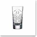 Zwiesel 1872 Charles Schumann Hommage Glace Longdrink Small, Pair
