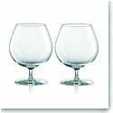 Rogaska Expert Cognac, Pair