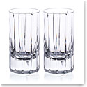 Rogaska Avenue Shot Glass, Pair