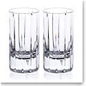 Rogaska Avenue Shot Glass, Pair