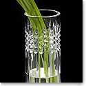 "Waterford Fleurology Tina 9"" Clear Bud Vase"