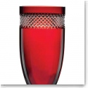 Waterford John Rocha Red Cut Vase
