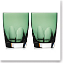 Waterford W Fern DOF Tumbler, Pair