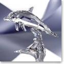 Swarovski Dolphin Baby