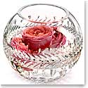 "Waterford Fleurology Meg 8"" Rose Bowl"