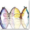 Premium Greeting Card, The Butterflies