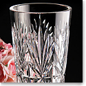 "Cashs Crystal Annestown 10"" Straight Tall Vase"