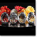 Cashs Crystal Four Seasons Egg Set