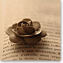 Premium Greeting Card, Clay Rose