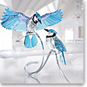 Swarovski Paradise Pair of Blue Jays