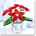 Swarovski Poinsettia, Small
