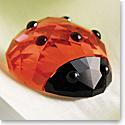 Swarovski Lucky Ladybird Ladybug