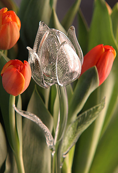 Waterford Crystal Fleurology Flower Tulip